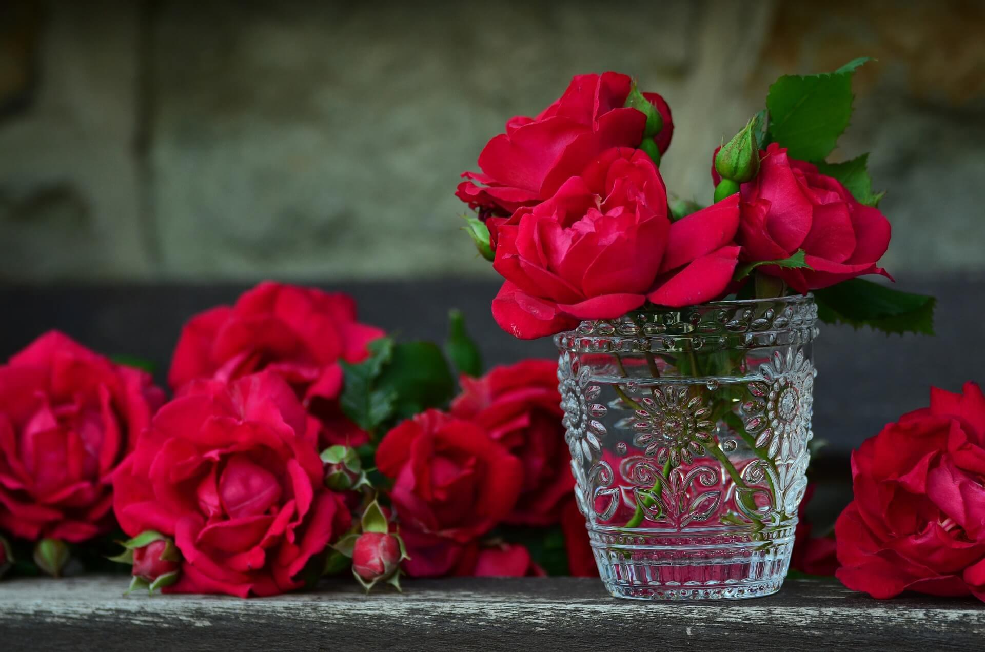 Floristería en Higuera de la Sierra envío a Domicilio Gratis