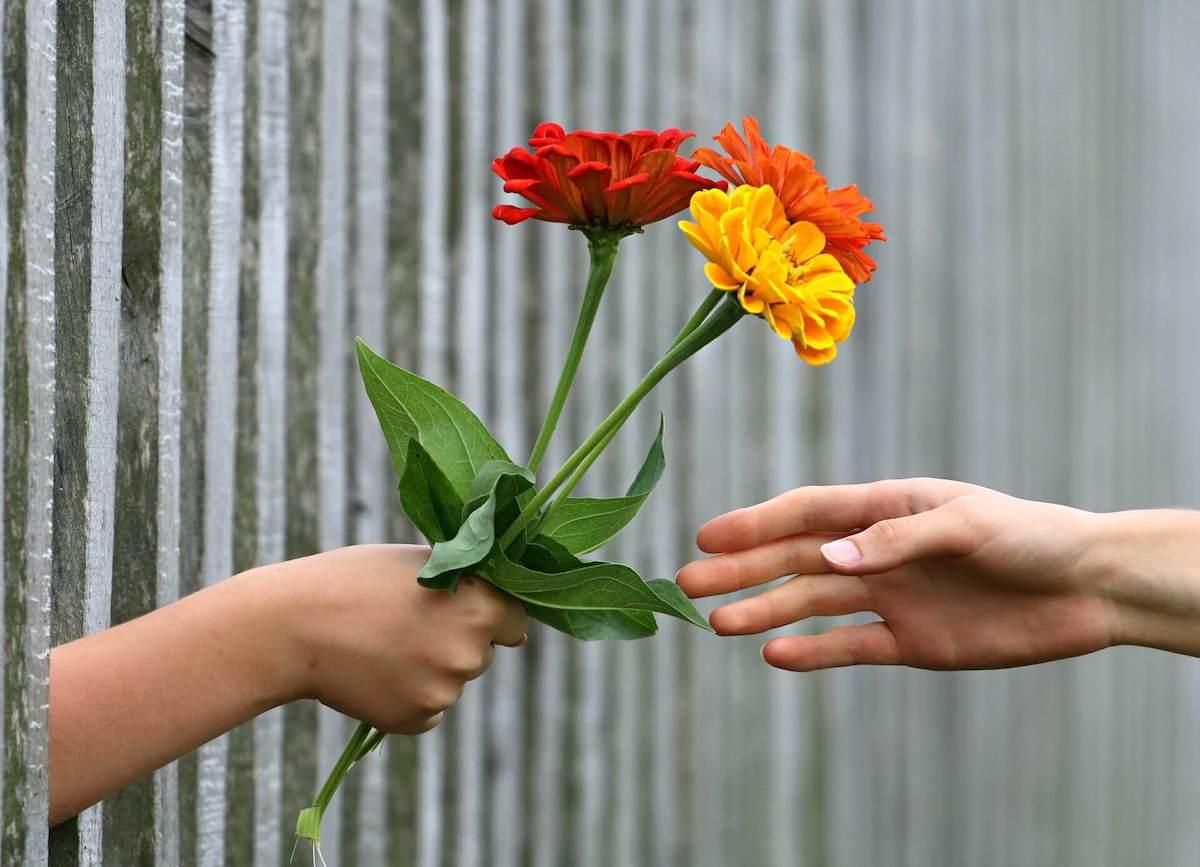 Flores a Domicilio Gerona