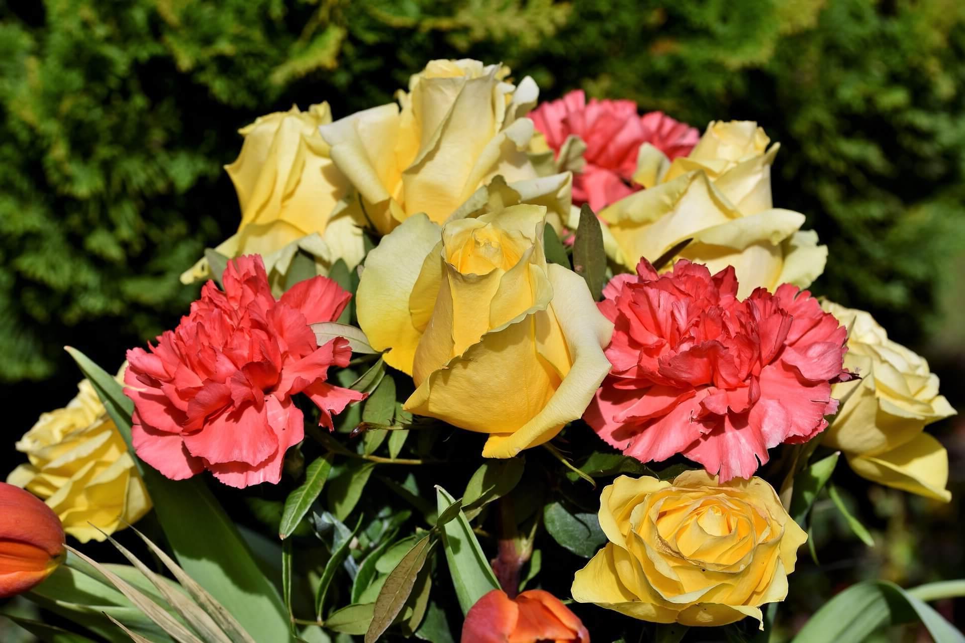 ¿Como enviar ramos de flores a Santa Marta de Tormes?