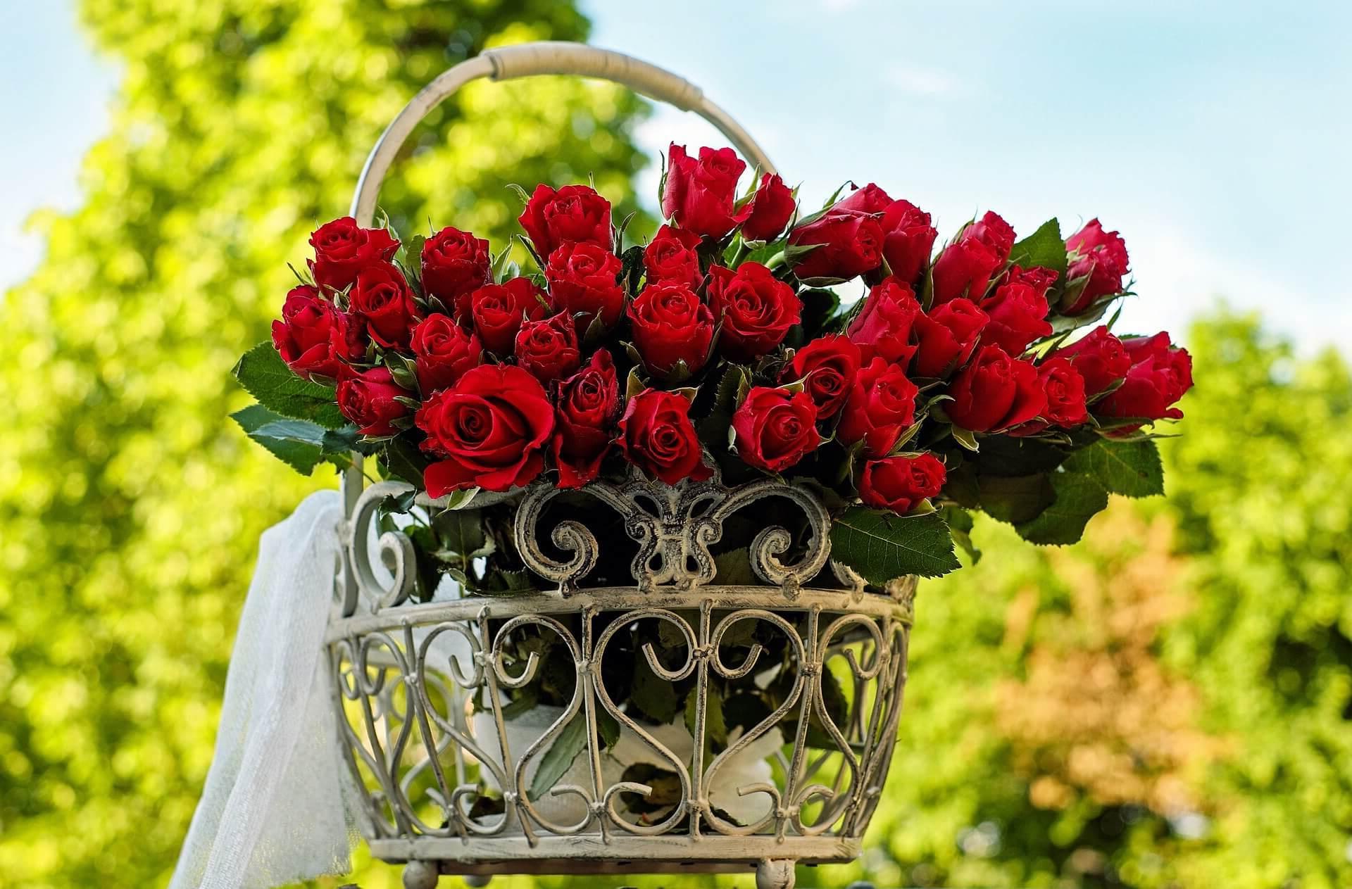 ¿Como enviar ramos de flores a Salamanca?