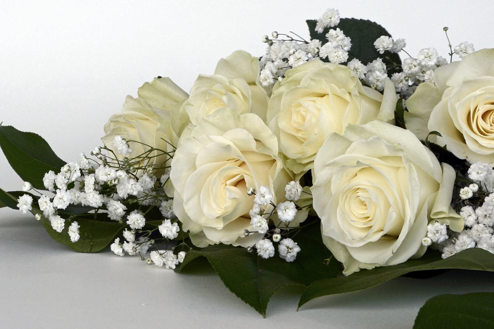 ¿Como enviar ramos de flores a Cáceres?
