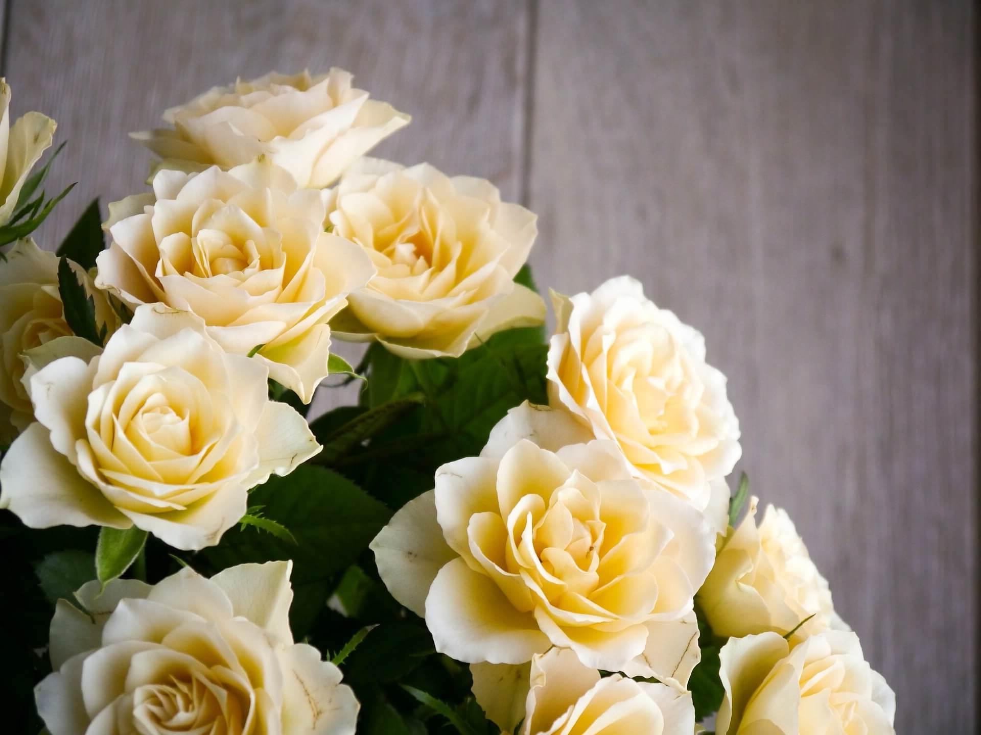 ¿Como mandar ramos de flores a Adahuesca?