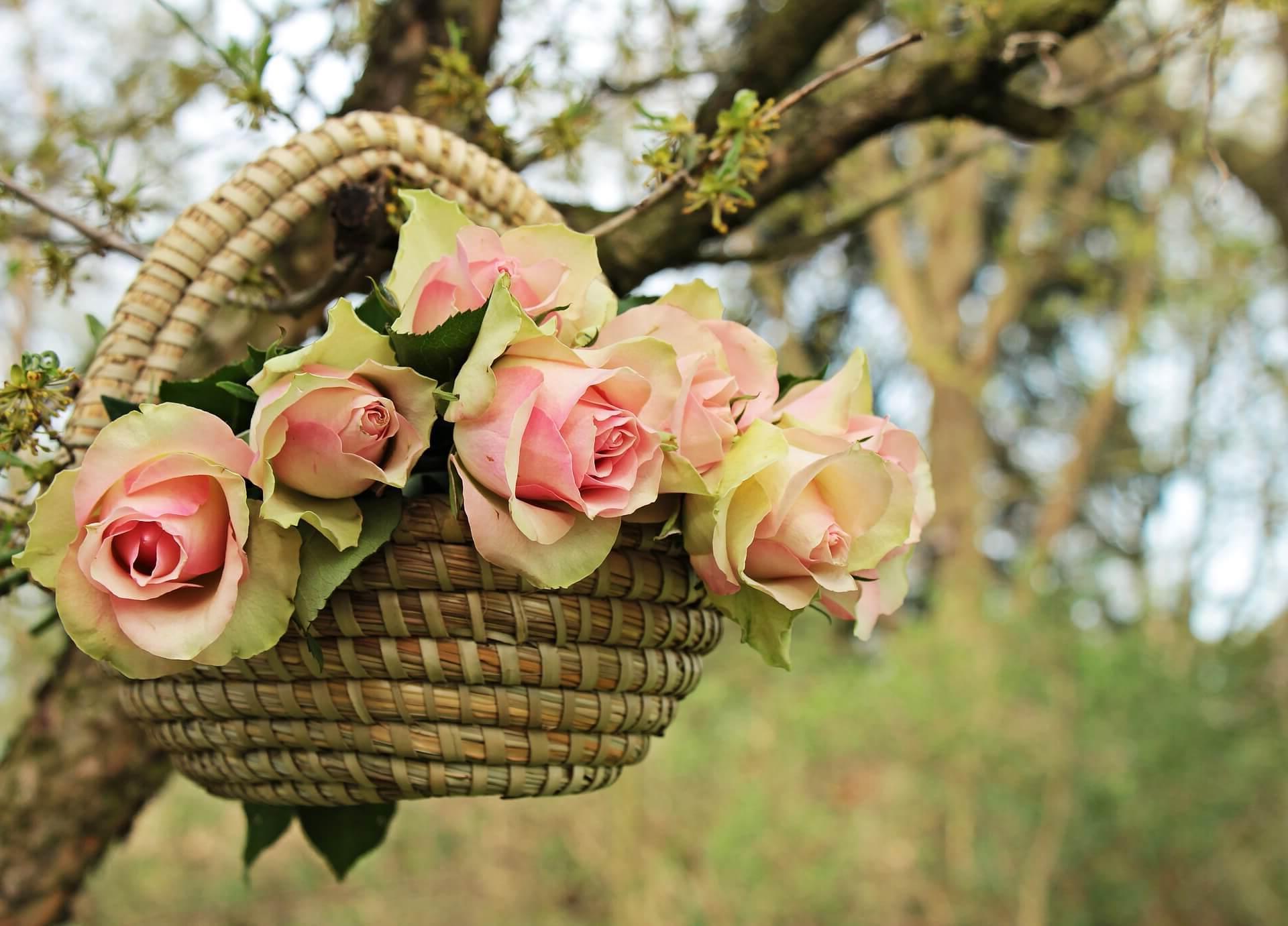 ¿Como mandar ramos de flores a Ezprogui?