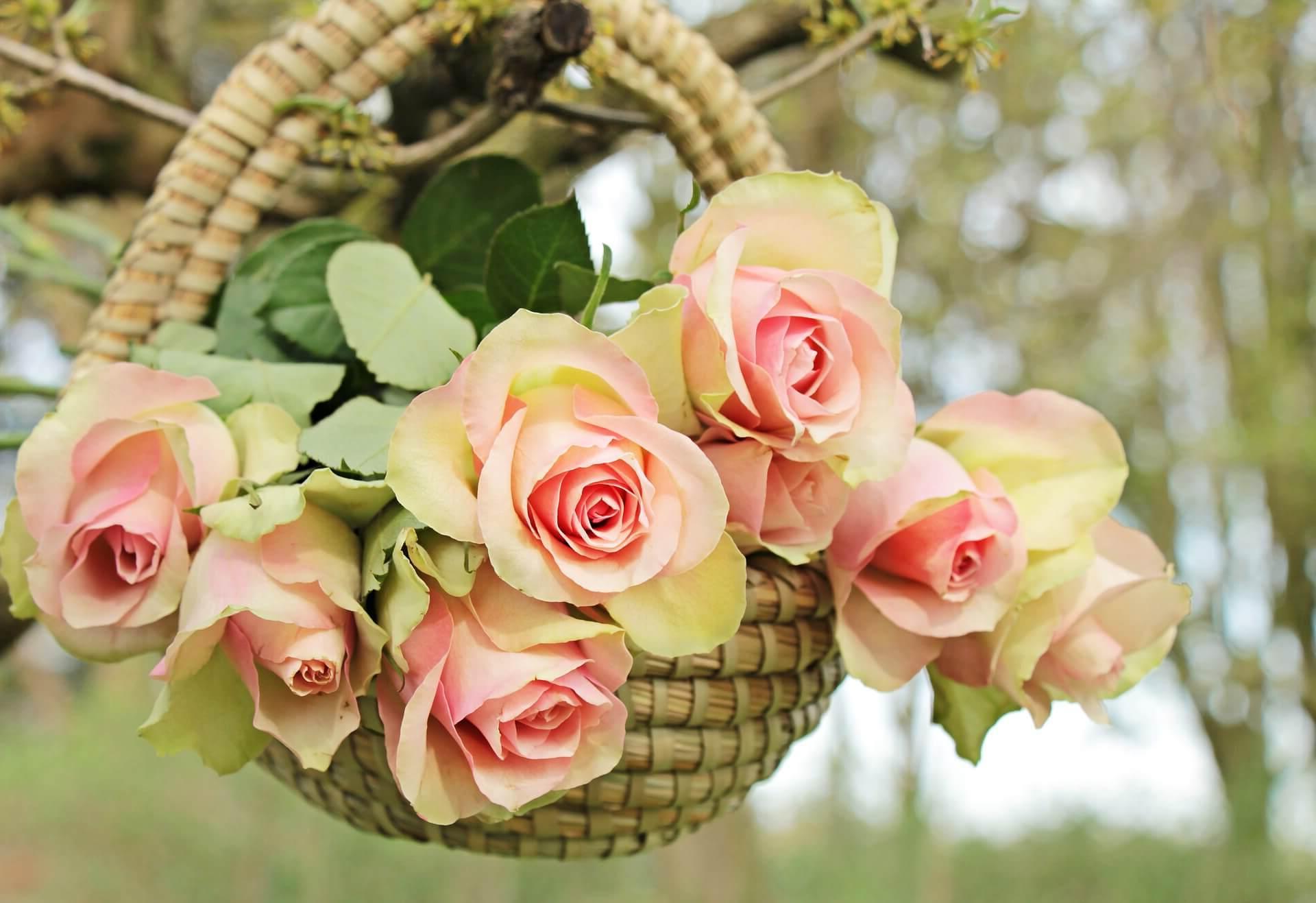 ¿Como mandar ramos de flores a Tuineje?