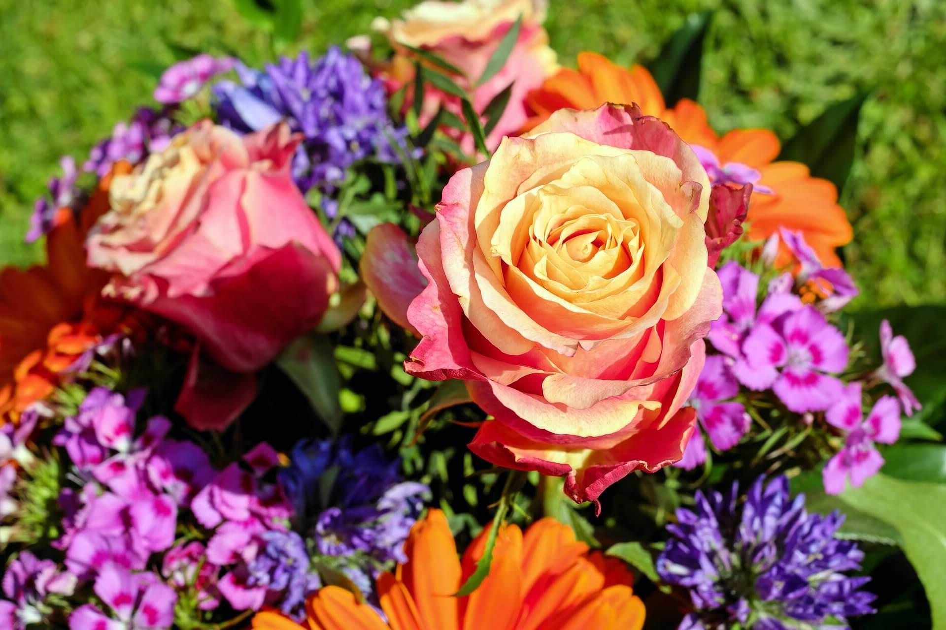 ¿Como enviar ramos de flores a Oviedo?