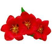 Aniversario 4 ramos de flores por aniversario